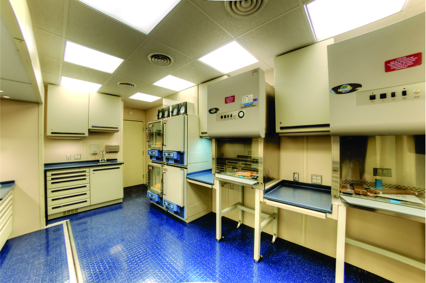 Mobile Medical Labs